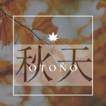 El otoño según la medicina tradicional china (primera parte)