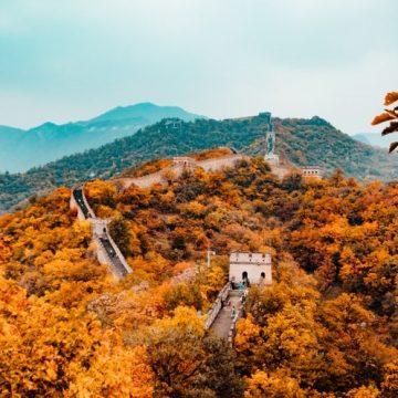 EL OTOÑO SEGÚN LA MEDICINA TRADICIONAL CHINA (Segunda parte)