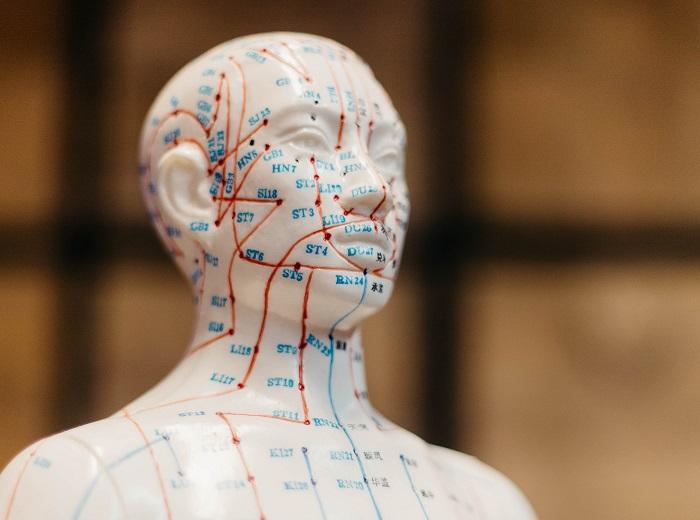 Beneficios de la acupuntura: ¿Qué es y para qué sirve..