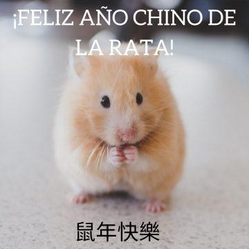 ¡Feliz año de la rata! El año nuevo chino