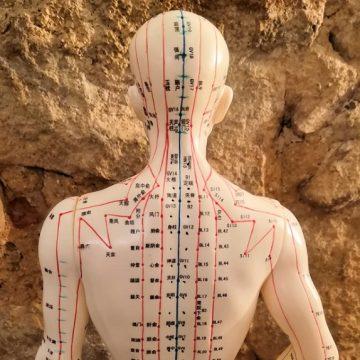 La función del riñón y la vejiga en la Medicina tradicional China (2ª parte)