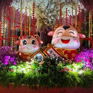 Año nuevo chino: el año del buey (metal)