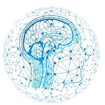 ¿Qué relación existe entre el cuerpo y la mente?